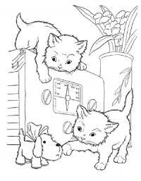 Котята играют на радио Для детей онлайн раскраски с цветами