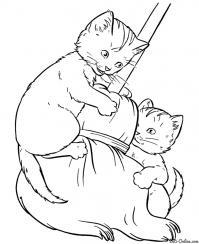 Котята на метле Для детей онлайн раскраски с цветами