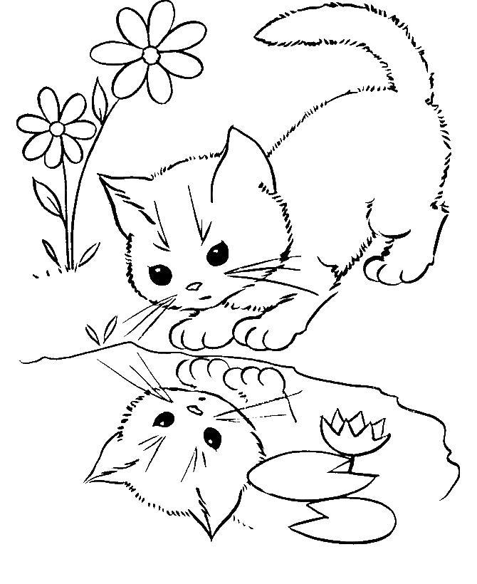Котенок в отражение озера Для детей онлайн раскраски с цветами