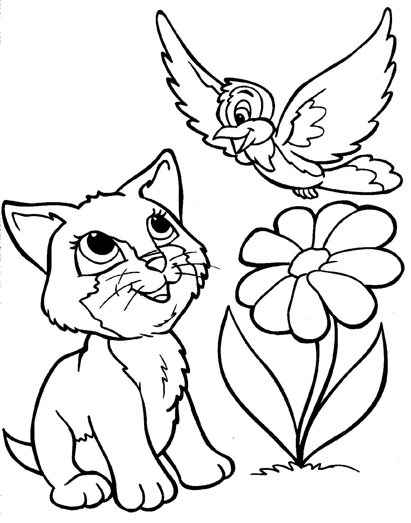 Котенок с птицей Для детей онлайн раскраски с цветами