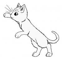 Котенок в прыжке Для детей онлайн раскраски с цветами