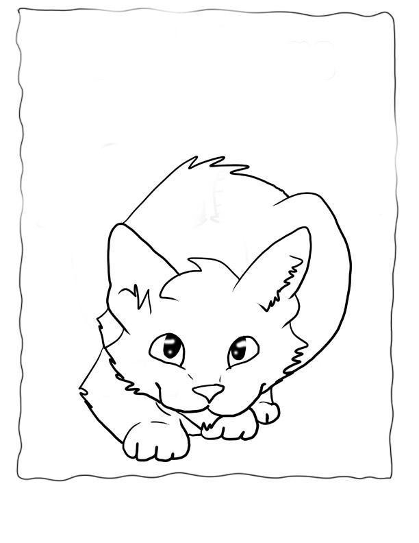 Кошка Картинки раскраски цветы