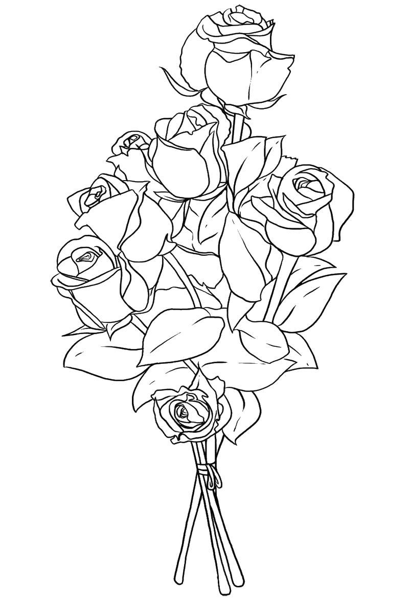 Цветы роз Раскраски с цветами распечатать бесплатно