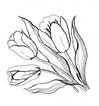 Цветы, рисунок Раскраски с цветами распечатать бесплатно