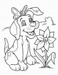 Собачка Онлайн бесплатные раскраски цветы